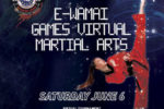 E-Wamai Games Virtual Martial Arts